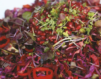 Grated Beet Salad with Pomegranate & Microgreens